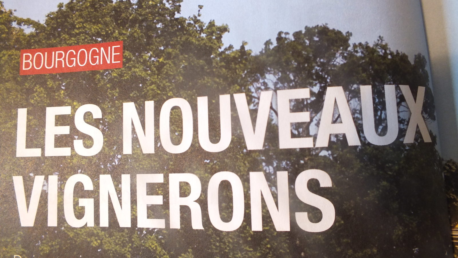 Gault et Millau dossier spécial les nouveaux vignerons Magali Bernard domaine du Clos du Roi à Coulanges la Vineuse